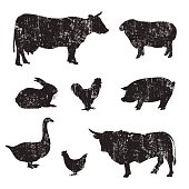 Grunge Silhouettes of hand drawn Farm animal