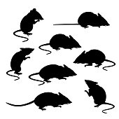Silhouettes of mice in different poses. Vector illustration isolated on white background