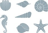 Silhouettes of sea shells, seahorse and starfish