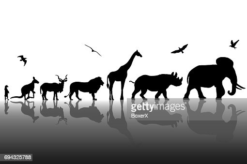Silhouettes of wild animals with reflections background. Vector illustration : Vector Art
