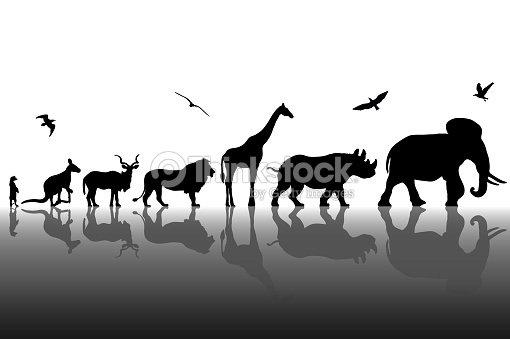 Siluetas de animales salvajes con fondo de reflexiones. Ilustración de vector : arte vectorial