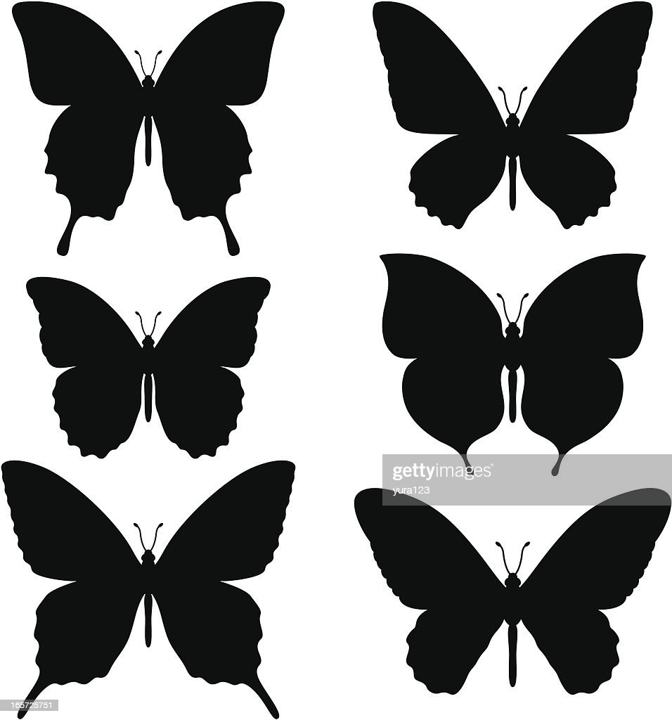butterfly insect stock illustrations and cartoons getty images