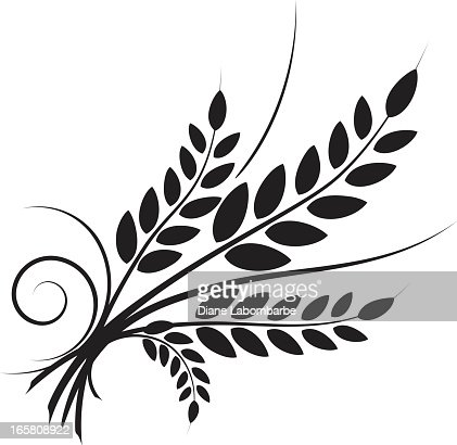 simple wheat icon with swirl designs black silhouette