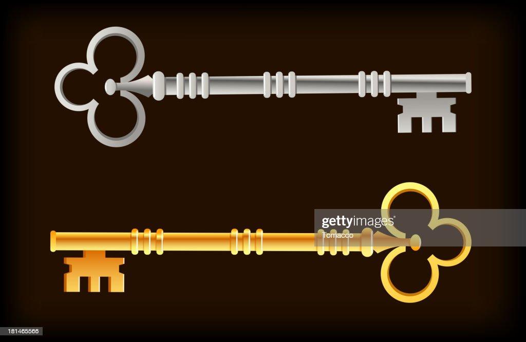 Skeleton Keys Gold Silver : Vector Art