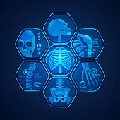 concept of science tehnology advencement, graphic of body scan with skeleton x-ray