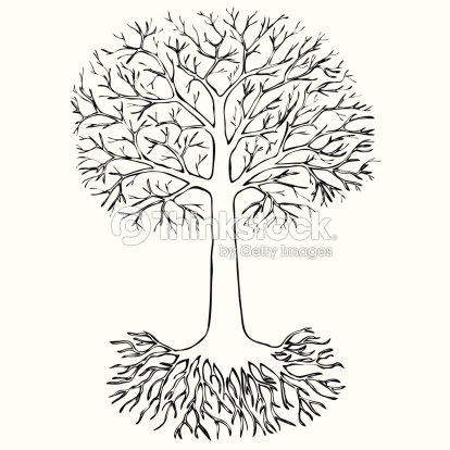 Croquis darbre avec des racines clipart vectoriel thinkstock - Croquis arbre ...