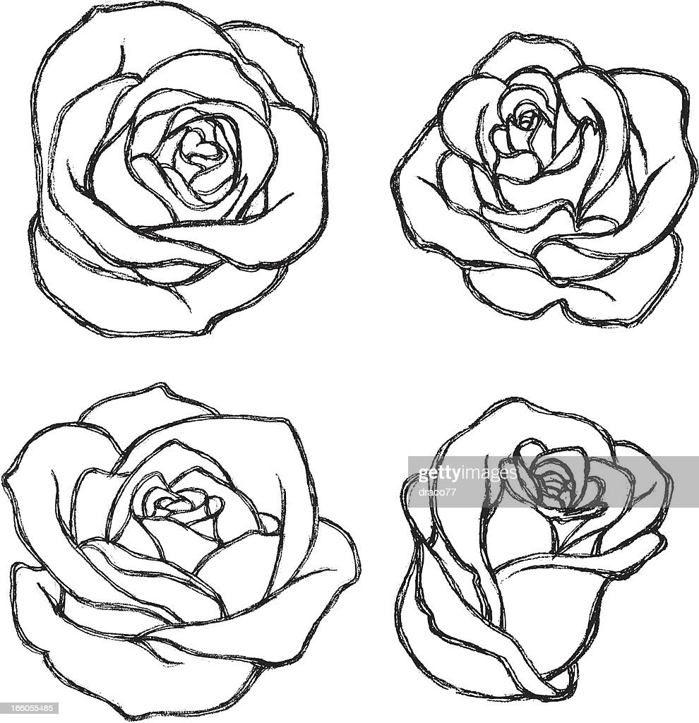 Simple Rose Tattoo Outline: Sketch Rose Flower Set Vector Art