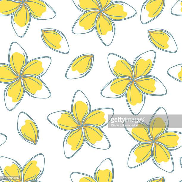 Skizzenhafte Frangipani Blumen Nahtlose Muster