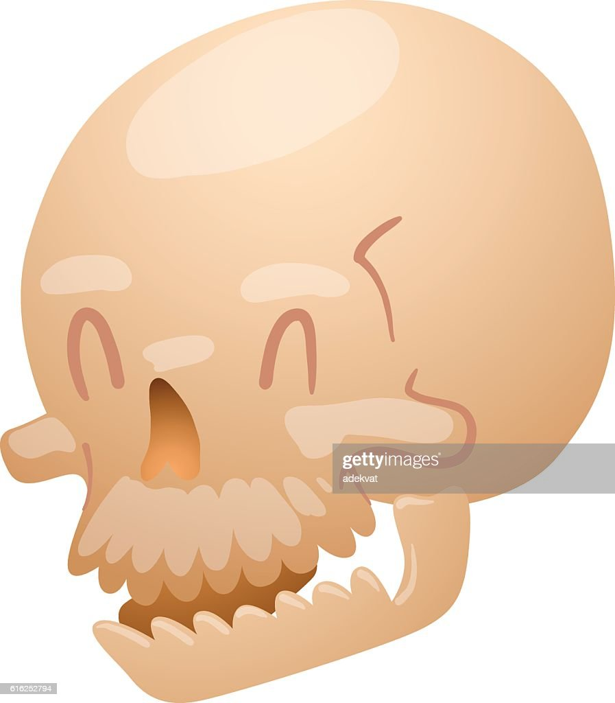 Skull face illustration isolated on white background. : Arte vectorial