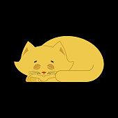 Sleeping cat yellow isolated. kitten be asleep. sleep pet