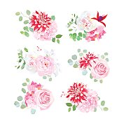 Small summer bouquets of pink rose, white peony, red motley dahlia, hydrangea, fuchsia, green plants, eucalyptus. Vector design set. All elements are isolated and editable.