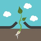 Small strong plant breaking asphalt. Hope, power, will and persistence concept. Flat design. EPS 8 compatible vector illustration, no transparency, no gradients