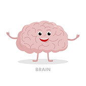 Smart brain cartoon character isolated on white background. Brain icon vector flat design. Healthy strong organ concept medical illustration