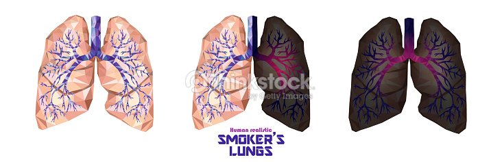 smokers lungs set in low poly healthy lungs sick lungs cancer lungs