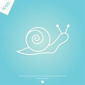 Snail line icon, outline sign
