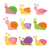 snail vector collection design