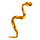 Snake icon. Cartoon illustration of snake vector icon for web