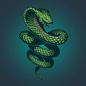 Snake illustration in vector.