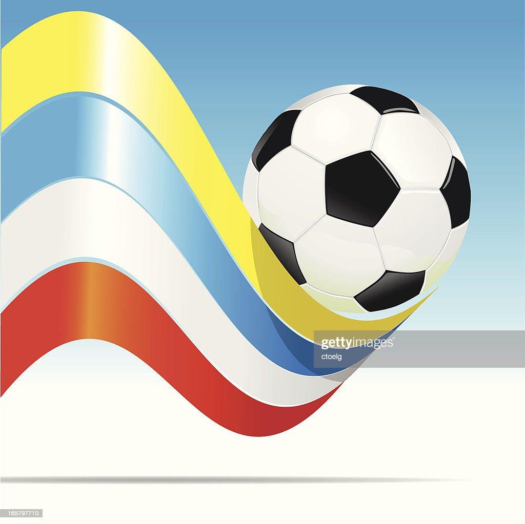 Soccer EM Ukraine Poland : Vector Art
