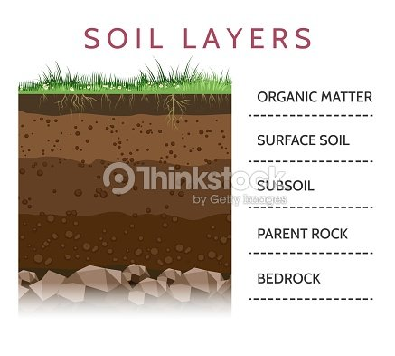 Soil layer scheme with grass : stock vector
