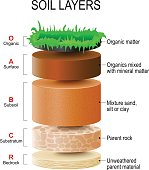 soil layers. Soil Formation and Soil Horizons. Soil is a mixture of plant residue and fine mineral particles, which form layers. Vector diagram