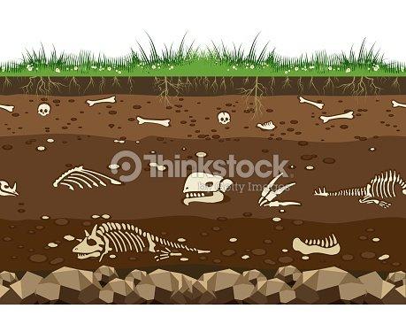 Soil with dinosaur bones : stock vector