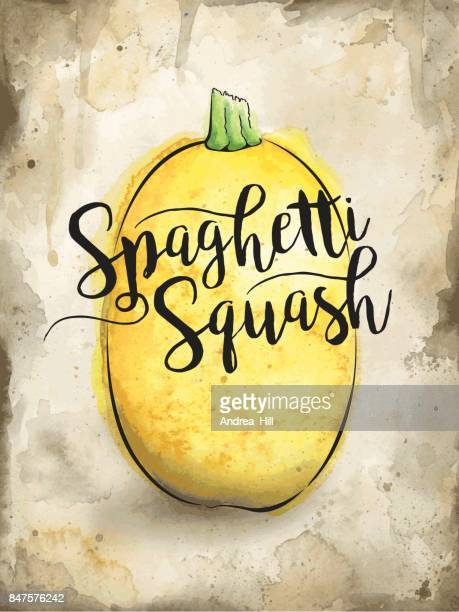 Spaghetti Squash Painted in Watercolor on Rustic Brown Background. Vector EPS10