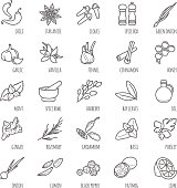 Spices and seasonings vector icons for your design