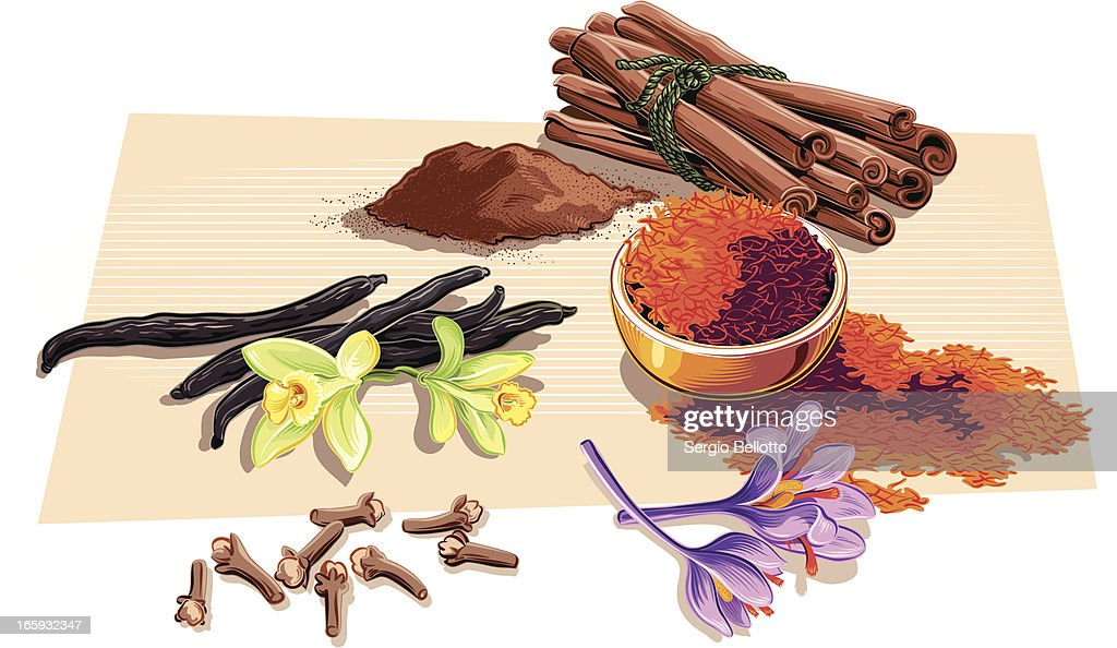 Spices Vector Art   Ge...