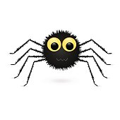 Spider isolated on white background. Vector illustration.