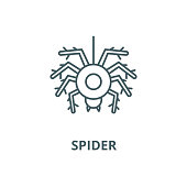 Spider vector line icon, outline concept, linear sign