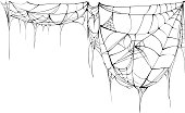 Spider web isolated on white background. Illustration in vector format