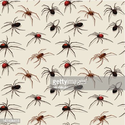 Spiders seamless pattern : Vector Art