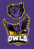 vector of sport mascot style of owl in set