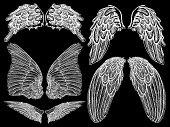 Wing collection vector.