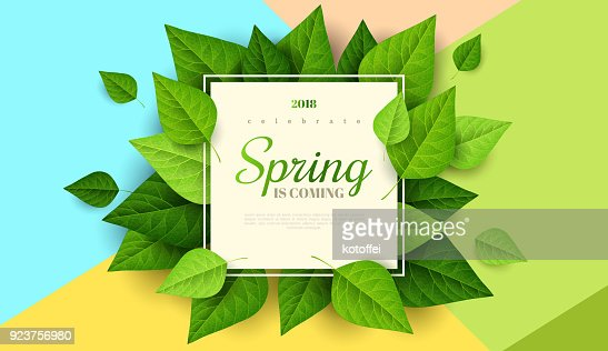 Spring background with green leaves : Arte vettoriale