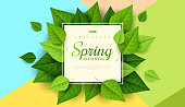Spring background with green leaves and square frame on trendy geometric backdrop. Vector illustration. Fresh template design for posters, flyers, brochures or vouchers.