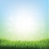 Spring Grass. Vector Illustration EPS10. Contains transparency.