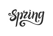 spring lettering. Hand write. Decorative element for design. Isolated