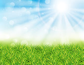 Spring or summer sunny day vector illustration. Green grass, rays of sun and bokeh. Landscape
