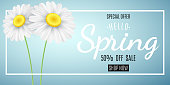 Spring sale concept. Special offer. Advertising web banner for sale. Chamomile on a blue background. Seasonal daisy flower. Hello spring. Calligraphic text. Vector illustration