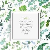 Square botanical vector design frame. Baby blue eucalyptus, salal, tropical leaves, various plants and herbs.Natural greenery card with rustic pattern backdrop. All elements are isolated and editable