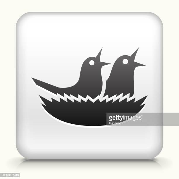 Square Button with Birds royalty free vector art
