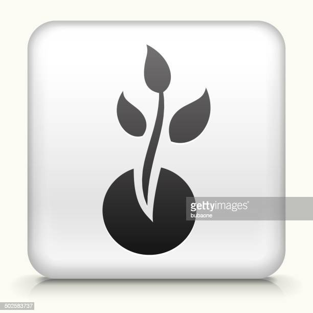 Square Button with Plant Growth royalty free vector art