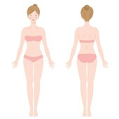 female body. front and back view. Isolated vector illustration.