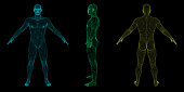 Standing man. Wireframe human body. Vector outline illustration. Different viewes.