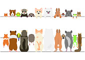 standing pet animals front and back border set.