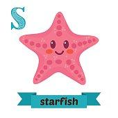Starfish. S letter. Cute children animal alphabet in vector. Funny cartoon animals. Vector illustration