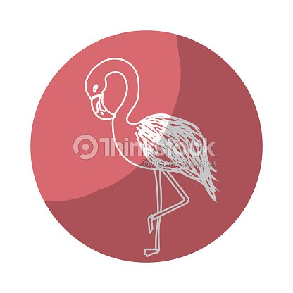 Sticker beauty and exotic flamingo bird animal