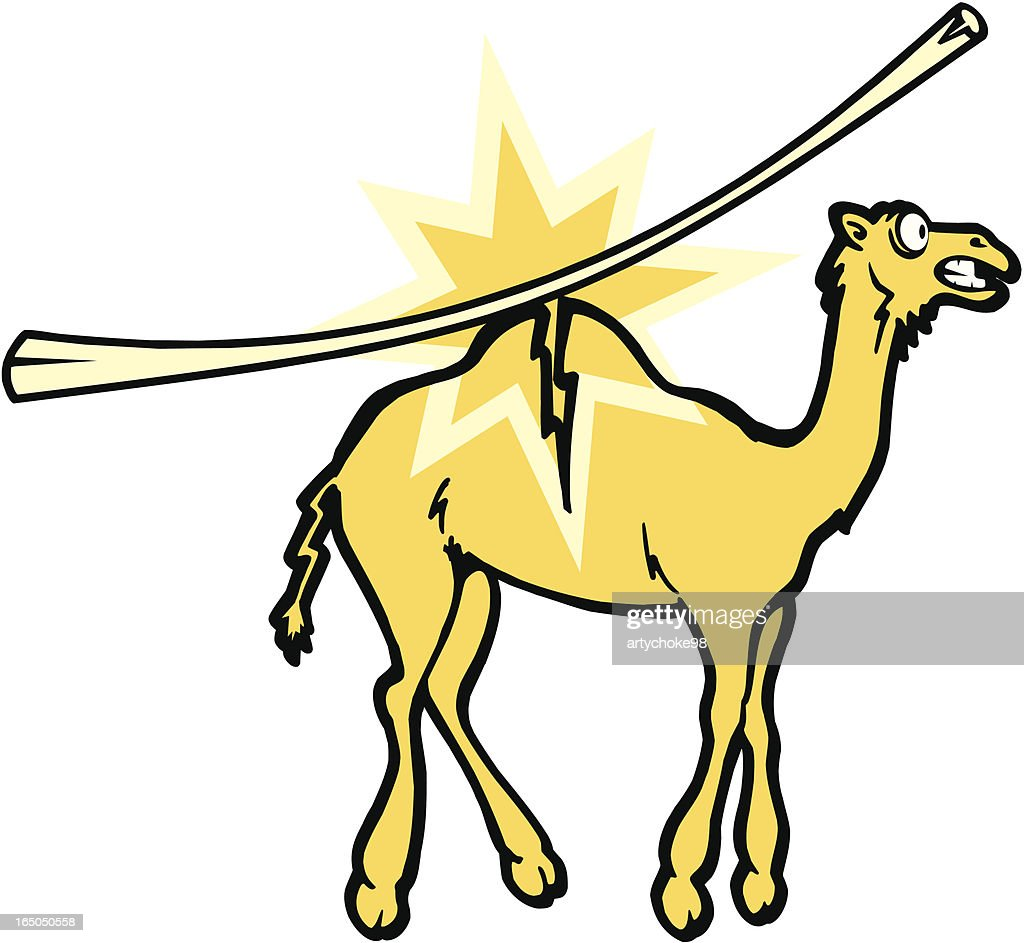 straw that broke the camels back vector art getty images